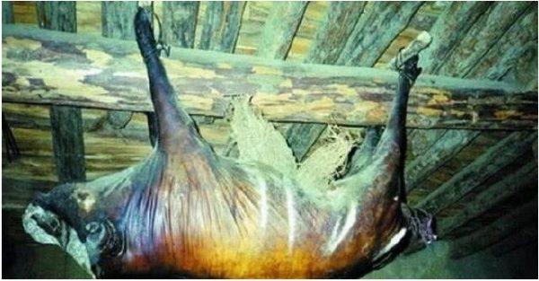 Con lợn khô xác treo xà nhà 30 năm được trả giá tiền tỷ