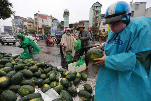 Người Hà Nội mua giải cứu dưa hấu không thể xuất sang Trung Quốc - Ảnh 3.