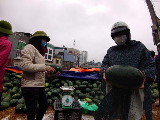 Người Hà Nội mua giải cứu dưa hấu không thể xuất sang Trung Quốc - Ảnh 4.