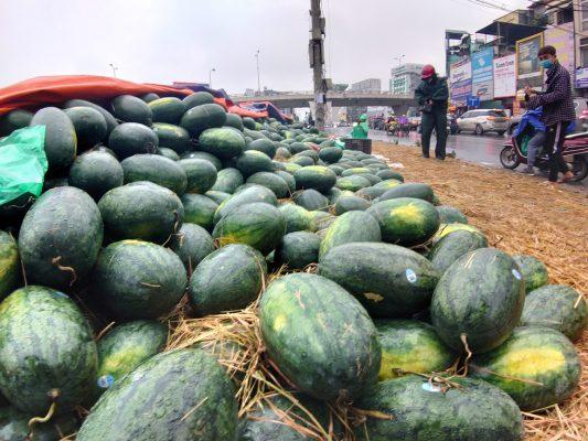 Người Hà Nội mua giải cứu dưa hấu không thể xuất sang Trung Quốc - Ảnh 6.