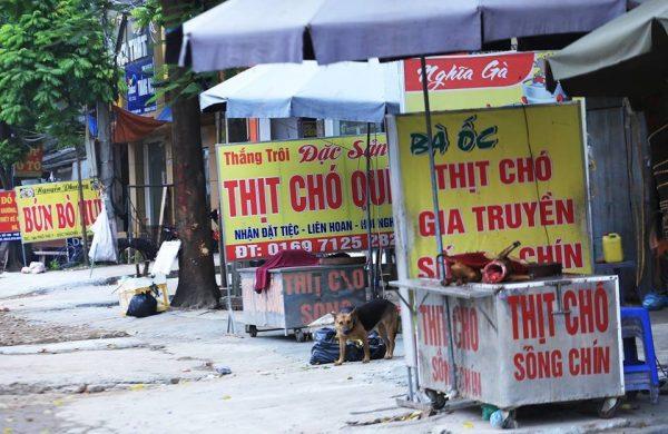 Diễn biến dịch Covid-19 tại Việt Nam: Bệnh nhân thứ 61 dự đám cưới, Ninh Thuận họp khẩn - Ảnh 3.